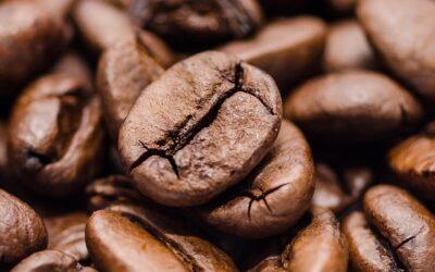 Capítulo 2: Hay café